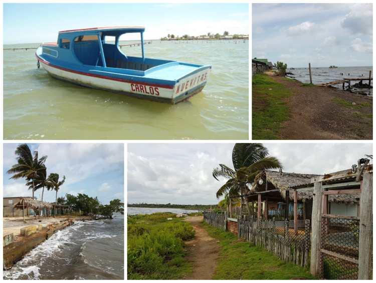Evalúan en Camagüey resultados de la Tarea Vida